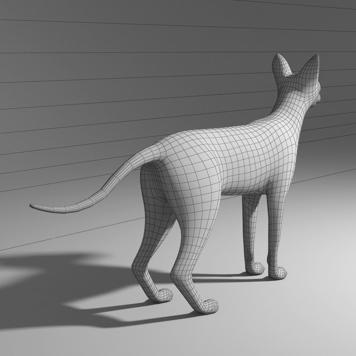 siamese cat 3d model - photo #28
