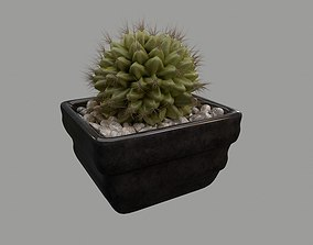 Cactus Pot -Model