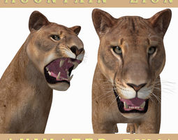 Mountain lion - 3d model animated