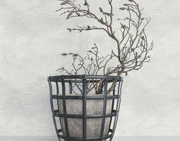 3D Decor branch dry magnolia flora