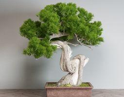 bonsai pot 3D model