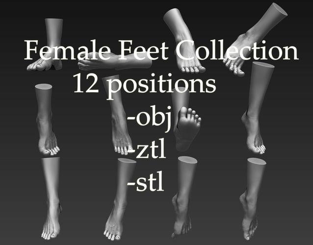 12 female feet 3d model obj stl ztl 1