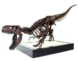 T-Rex Skeleton - Leo Burton Mount 3D printable model