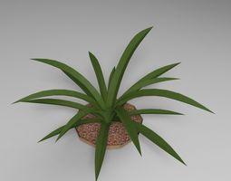 Plant 3D nature