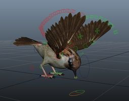 Rig Sparrow Bird 3D asset