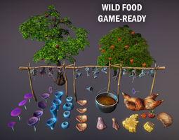 Wild food 3D model