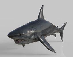 3D model Big White Megaladon Shark