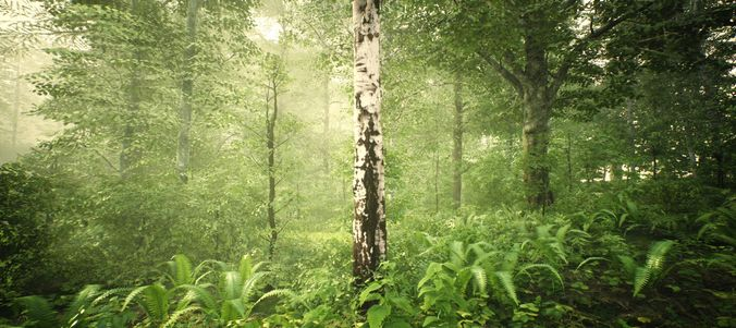 Vegetation 80 models pack Unreal engine 4 and FBX file | 3D model