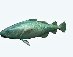Cat Fish 3D freswater