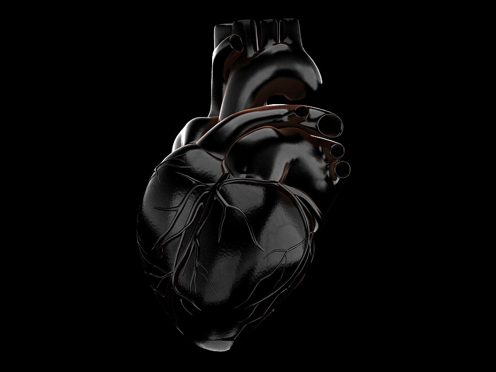 Human heart vray 3d cgtrader ccuart Images