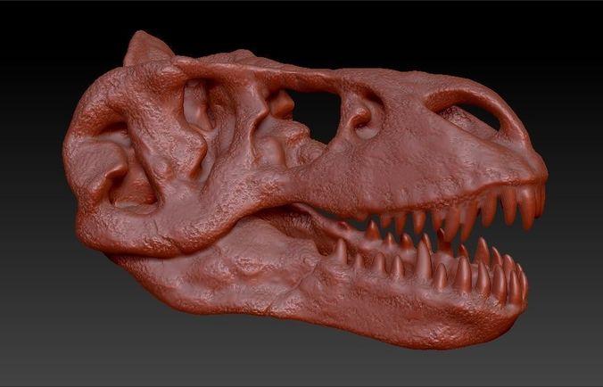 t-rex skull 3d model obj mtl ztl 1