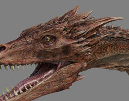 Dragon Animations 3D model