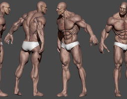 alpha flex free 3d model ztl, Muscles