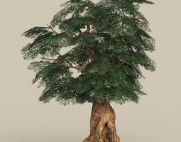 Game Ready Tree 05 3D model