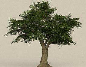 3D model Game Ready Tree 08