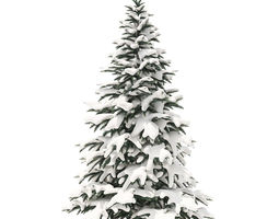 Spruce Tree with Snow 2point8m 3D model