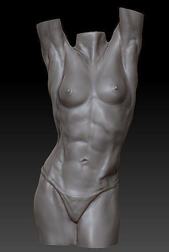 3D Female anatomy figure study | CGTrader