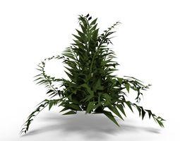 Plant botanical 3D
