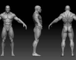 muscular male body 3d asset realtime