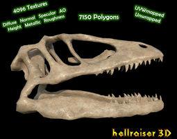 Animal Skull - Textured 3D asset