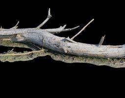 3D model Old log