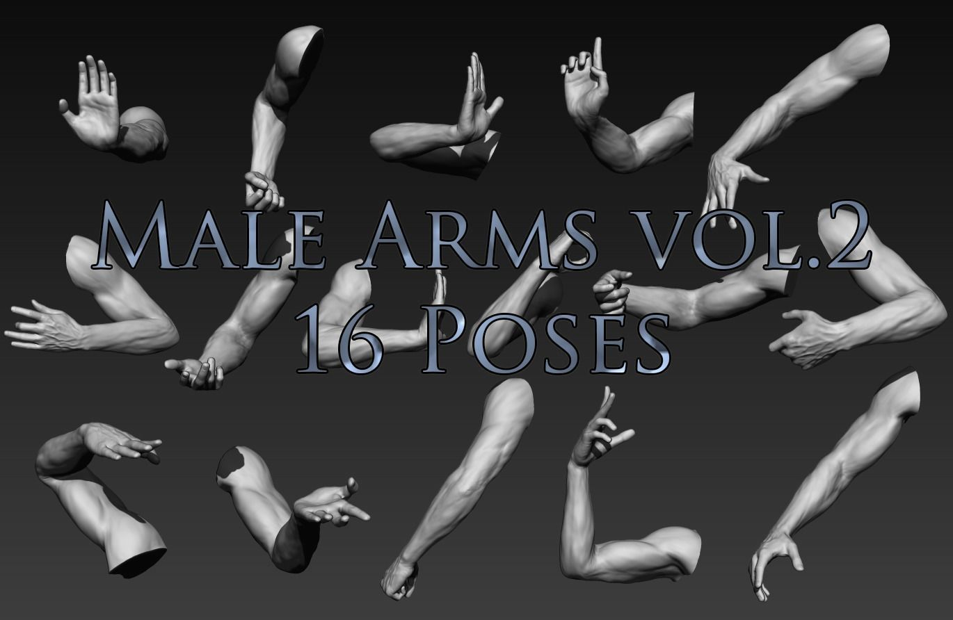 Male Arms Vol2 16 Poses