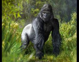 gorilla  animated 3d