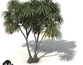 3D XfrogPlants Coastal Screw Pine