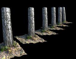 Birch 3D model game-ready