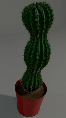 cactus in a pot 3d model obj mtl 3ds fbx stl blend dae 1