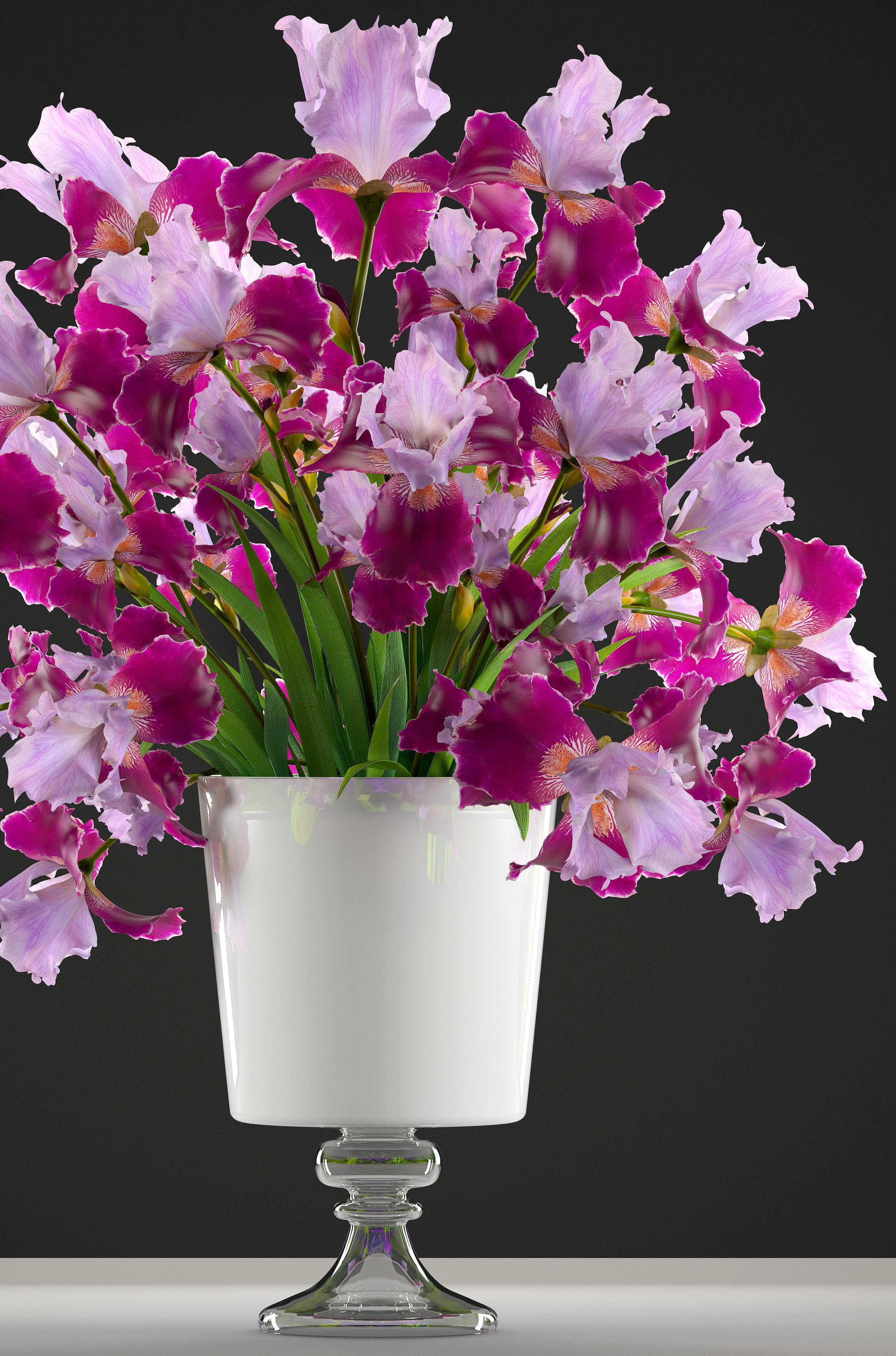 Flower Bouquet Of Iris 3d Model Cgtrader