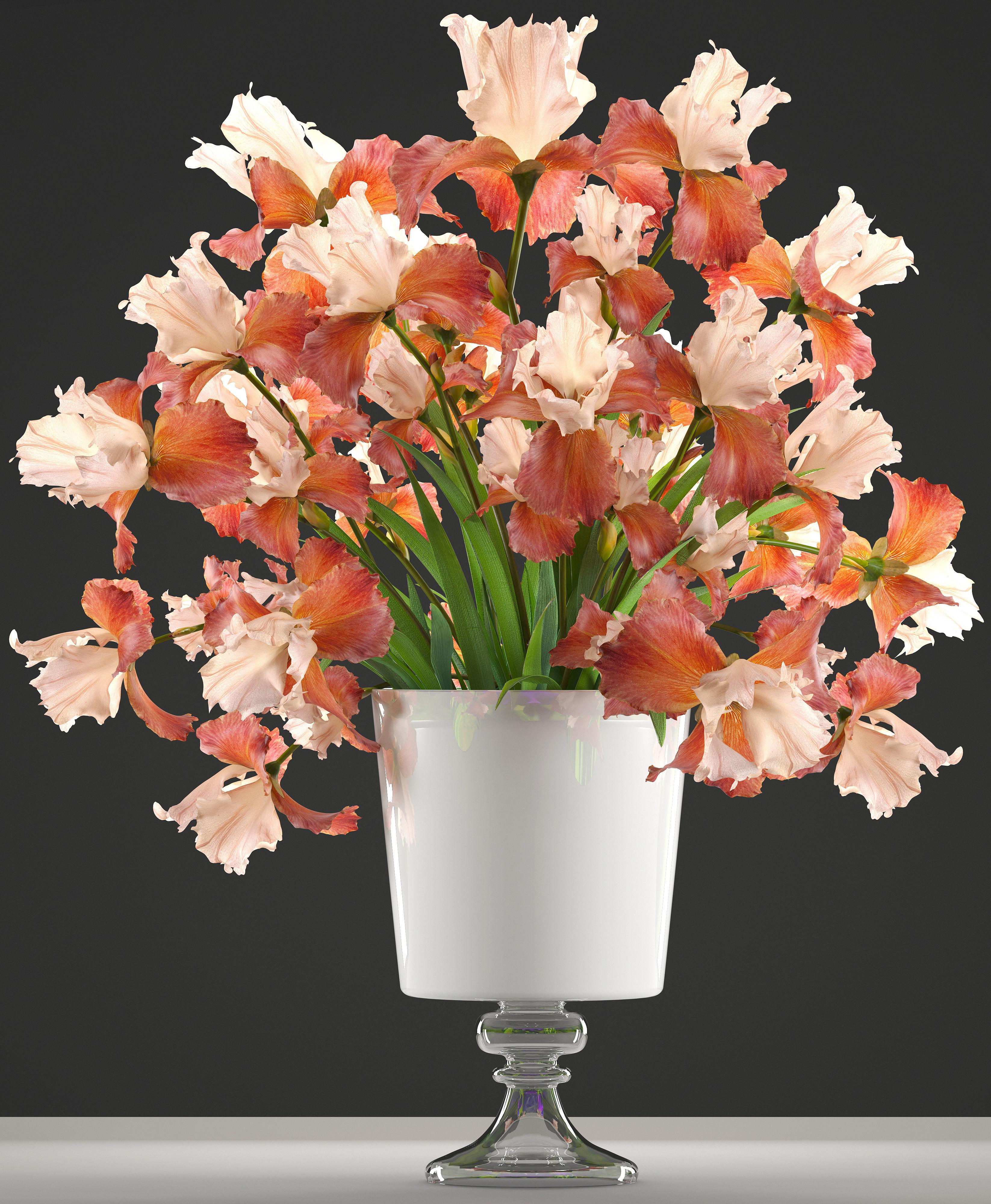 3d Model Flower Bouquet Iris Cgtrader
