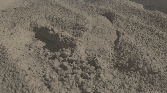 beach sand footprint raw scan 3d model obj mtl 1