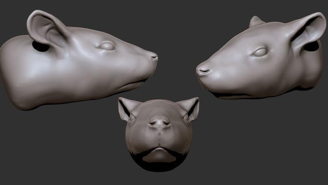 rat head 3d model obj mtl 1