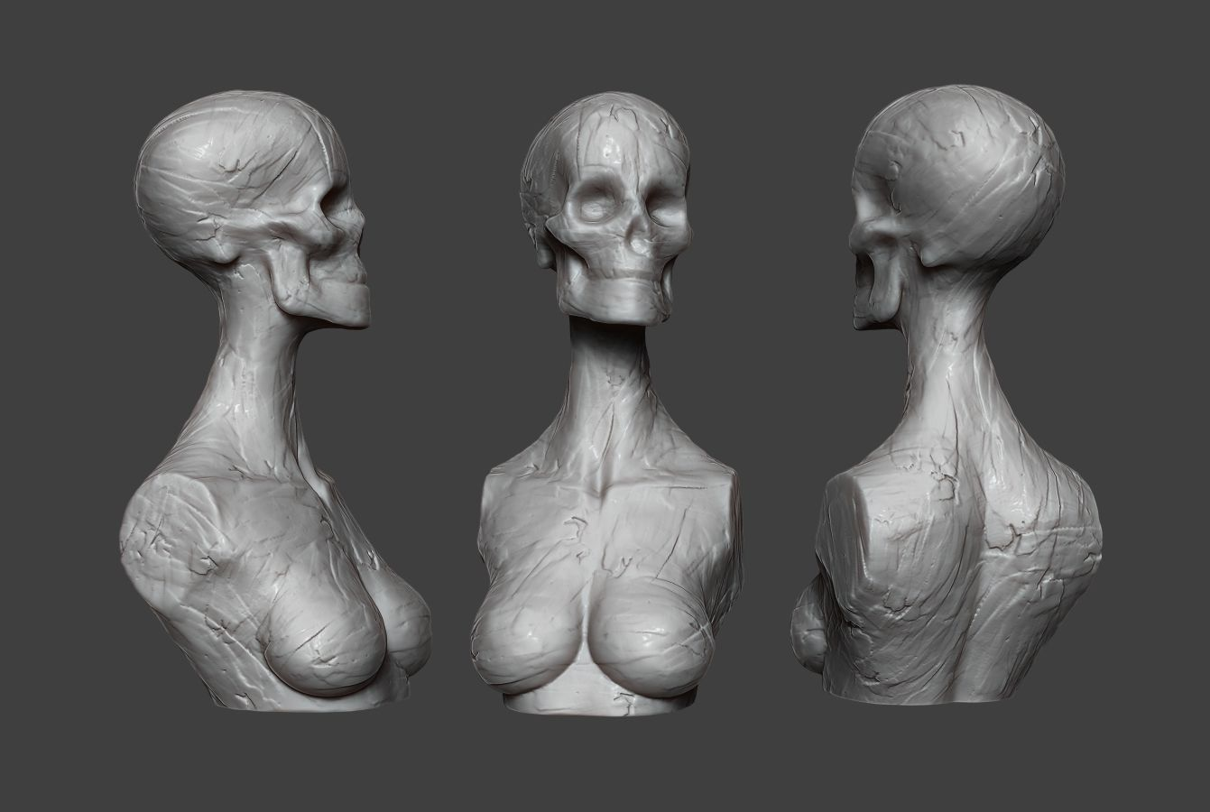 Clay Skull