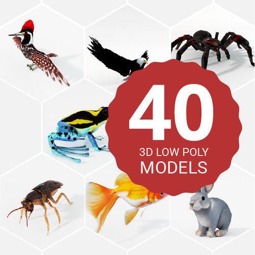 40 models animal pack - collection 3d model low-poly obj mtl 3ds fbx ma mb stl blend 1