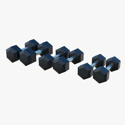 gym dumbbells - low poly 3d model obj mtl fbx blend 1