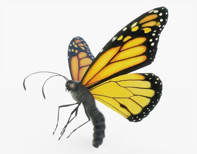 orange monarch butterfly rigged 3d model rigged obj mtl 3ds fbx stl blend dae 1