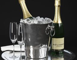 Champagne in Bucket 3D