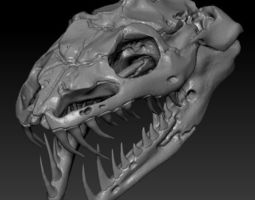 Anaconda Skull 3D print model