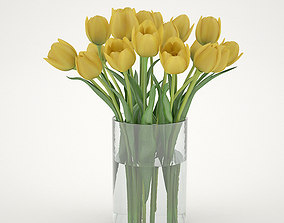 Yellew Tulips 3D