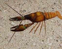 Crayfish 3D model
