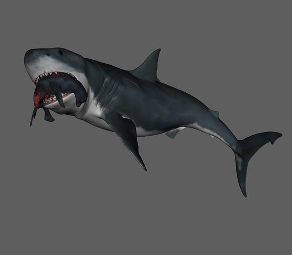 shark 3d model obj mtl stl 1