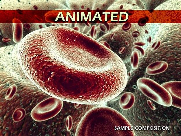 red blood cells animated 3d model rigged animated max obj mtl 3ds 1
