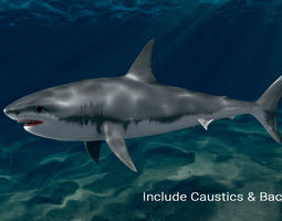 Low poly Rigged and Animated Big white shark 3D asset