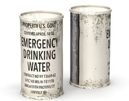 Emergency Water Can 3D model