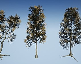 3D model Dead Tree Optimized Collection 3