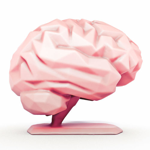 brain stand in style low poly 3d model max obj mtl fbx stl 1