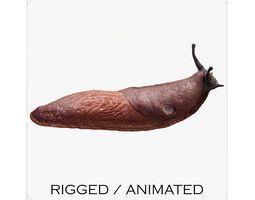 Arion Vulgaris 3D asset