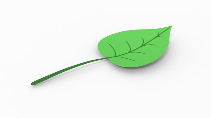 leaf with shapes 3d model obj mtl 3ds fbx stl dae x3d 1